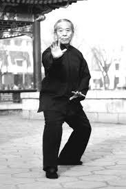Master Wang Santi Shi
